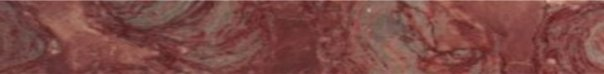 Chinese Rose Marlbe Very Large Web Banner Size